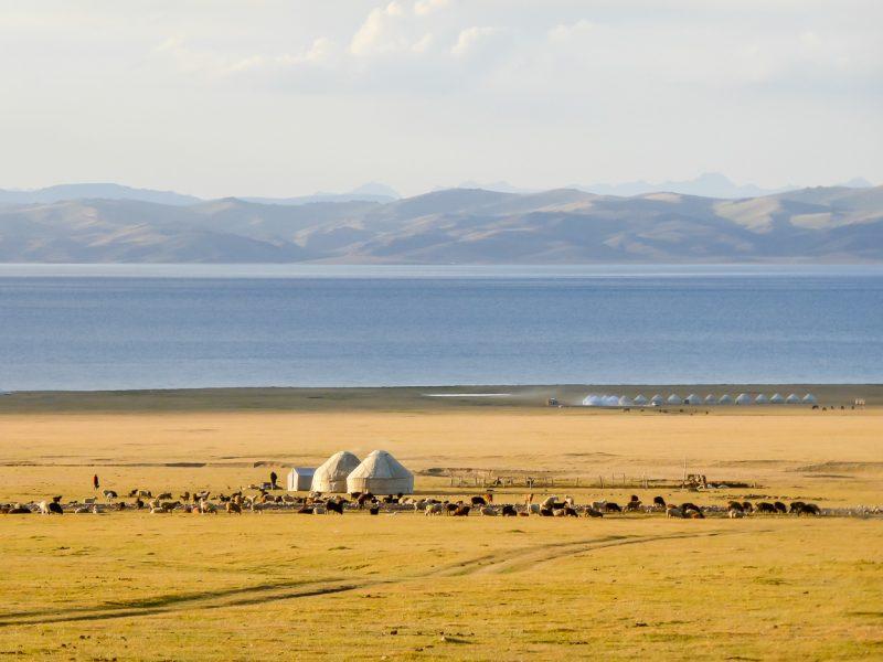 Reizen door Kirgizië in Centraal Azië (31)