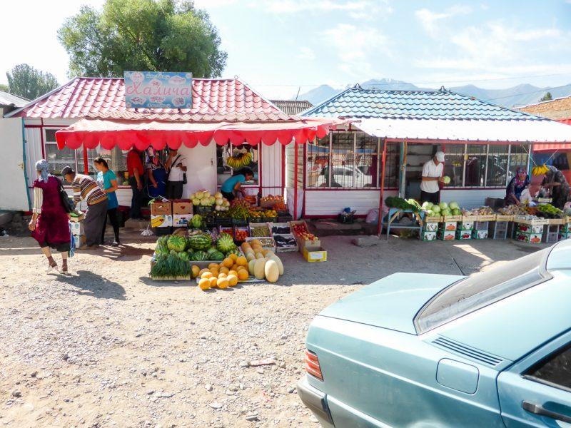 Reizen door Kirgizië in Centraal Azië (36)