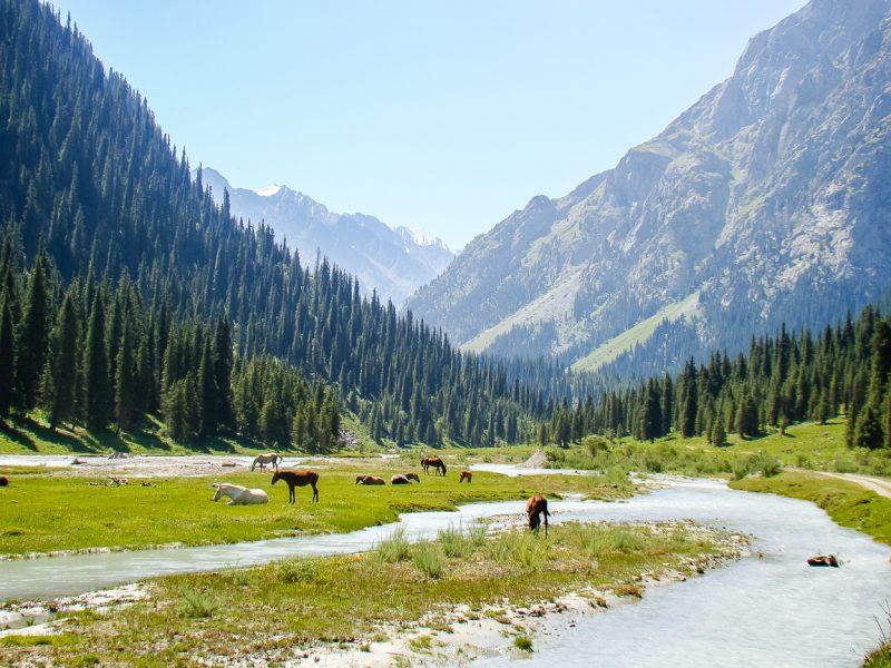 Reizen door Kirgizië in Centraal Azië (11)