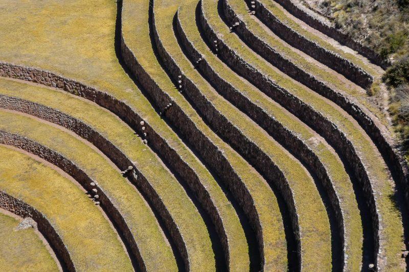 Terrassen in Moray in Sacred Valley, Peru