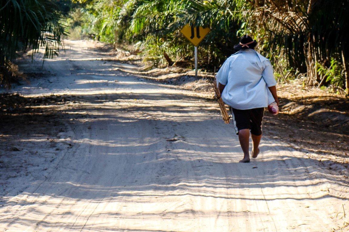 Gids in de Pantanal, Brazilië