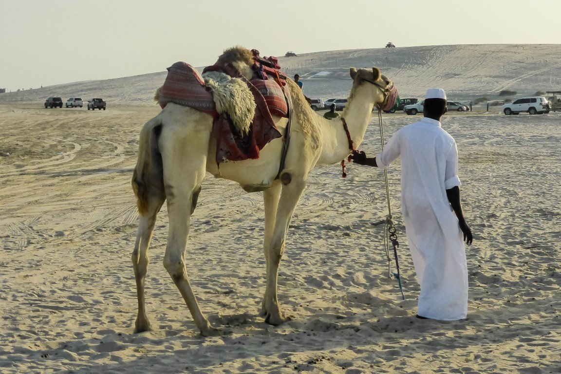 Desert safari in Khor al Adaid in Qatar