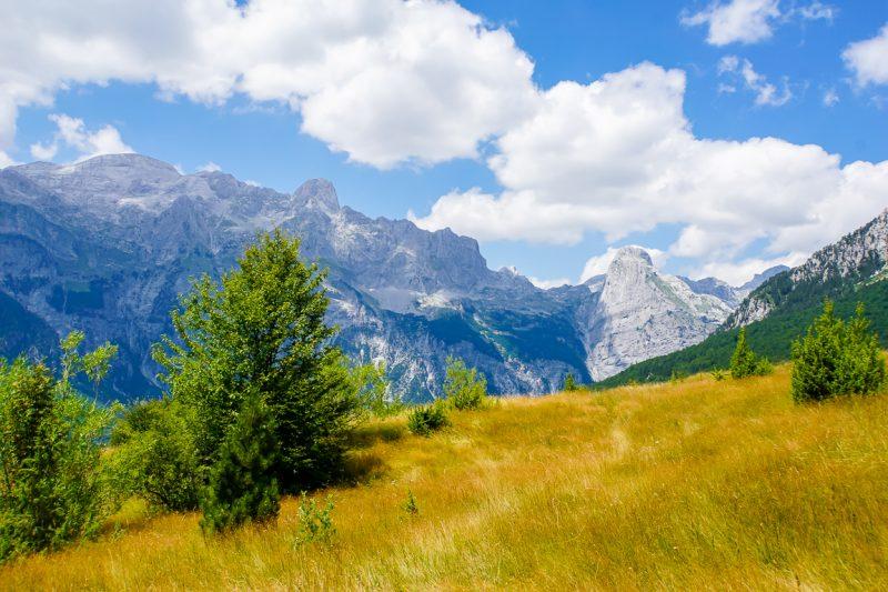 Grasvelden in de Albanese Alpen tussen Theth en Valbona, Albanië