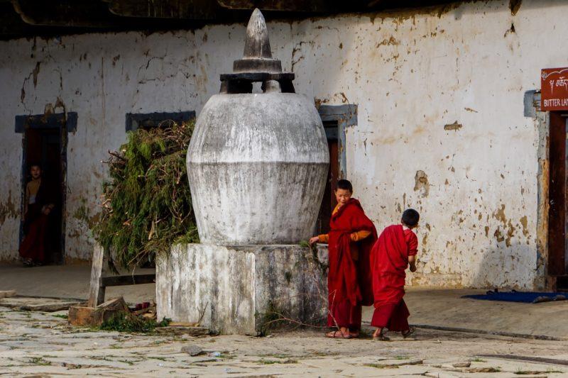 Jonge monniken bij Gangtey Goempa, Bhutan