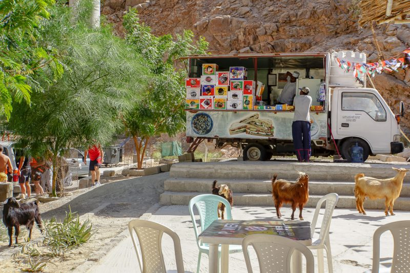 Geiten bij foodtruck in Wadi Shab in Oman