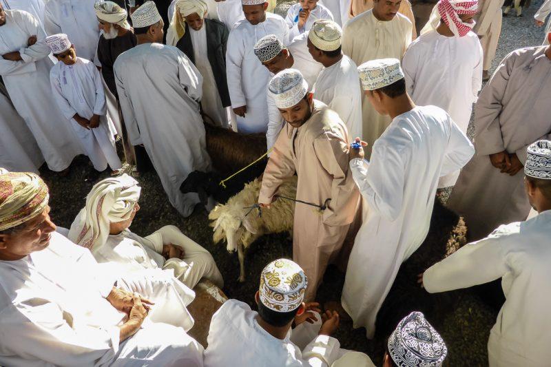 Geitenmarkt van Nizwa in Oman-4