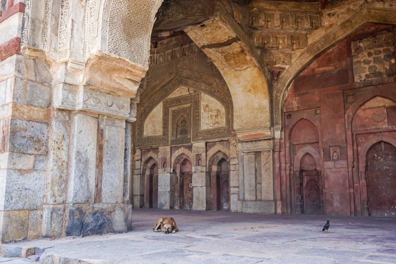 Genieten van de rust in het hectische Delhi in Lodi Gardens, India
