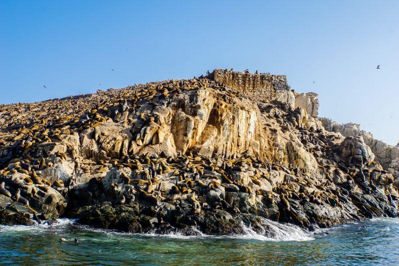 Rotsen bij Islas Palomino bij Lima, Peru