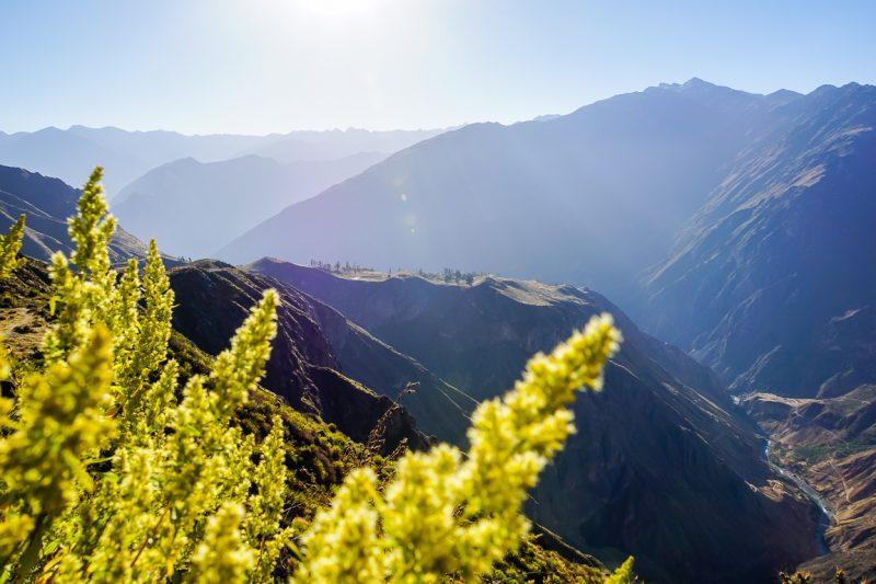 Trekkings in Colca Canyon, Peru
