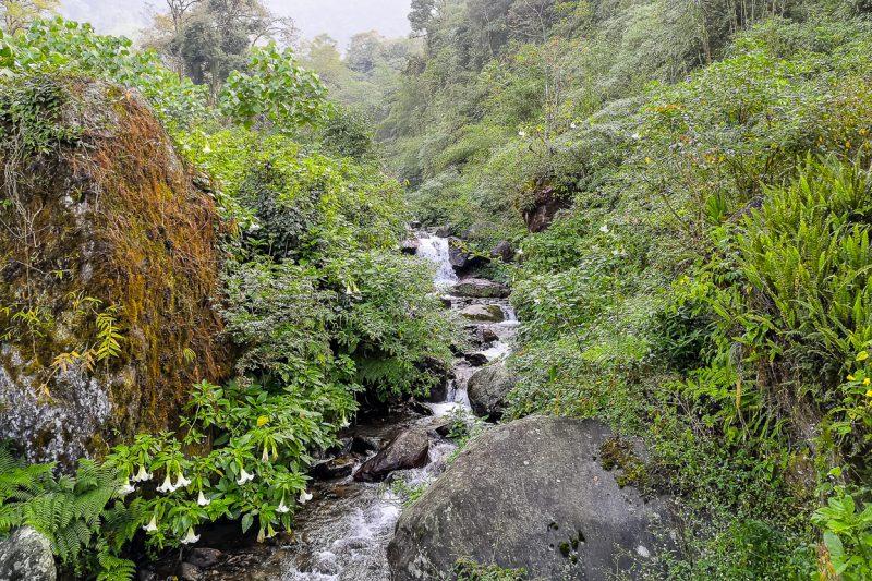 Waterval tijdens wandeltocht in Yuksom in Sikkim, India