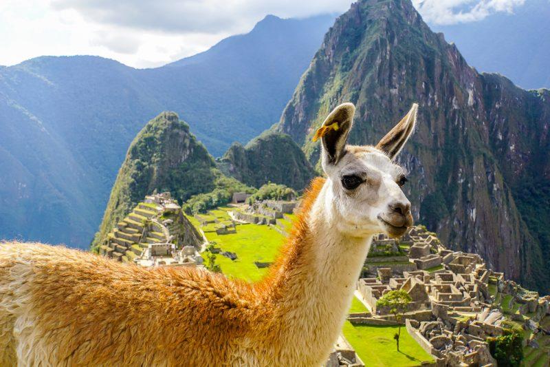 Machu Picchu in Peru bezoeken (6
